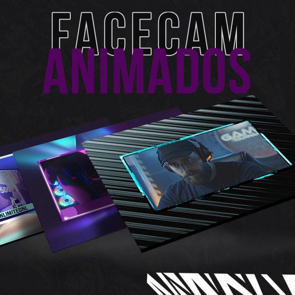 Webcam Overlays